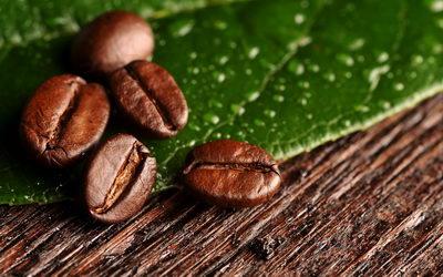 Кофейное обертывание от целлюлита: польза кофе, рецепты косметических антицеллюлитных процедур