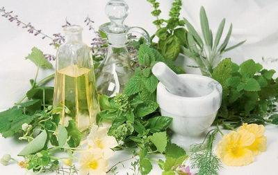 Домашние средства от целлюлита: рецепты, процедуры