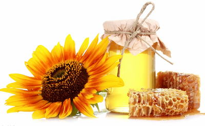 Антицеллюлитное обертывание с медом: рецепты, применение, преимущества процедуры