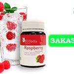 Малиновый жиросжигатель «Eco Pills Raspberry» — у лишнего веса нет шансов!